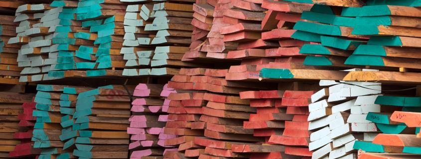 תמונה מחסן עצים - אורדילן