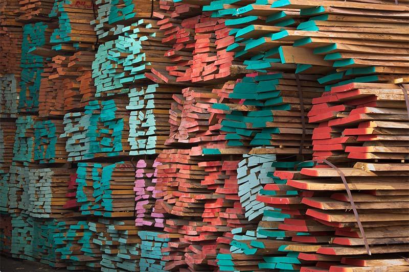 תמונה של קטנים-צבעוניים אורדילן