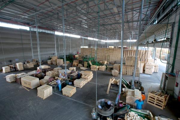 משטחים במחסן עצים - אורדילן