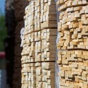 תמונה של עץ | אורדילן 10