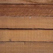 תמונה של עץ | אורדילן 8