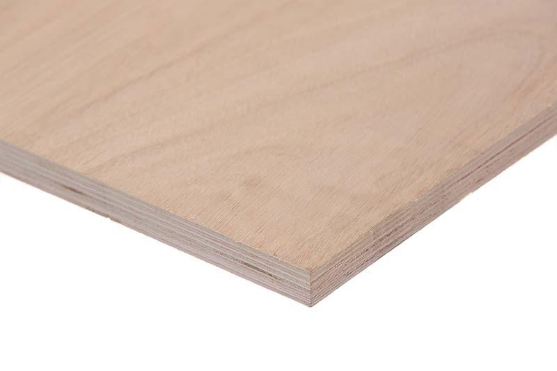 תמונה של עץ   אורדילן 4