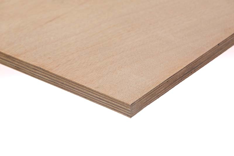 תמונה של עץ   אורדילן 1